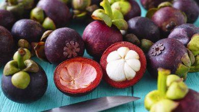 Photo of فوائد فاكهة المانجوستين أو جوز جندم : إليك١٠ فوائد مذهلة