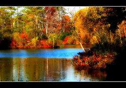250px-Autumn-Colors-1