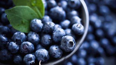 3 وصفات لمخبوزات بفاكهة التوت الأزرق