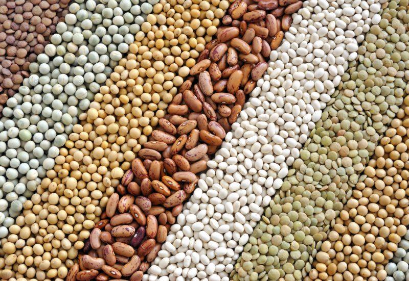 6 أغذية صحية للرئتين