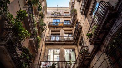 Photo of العناية بنباتات الشرفة : 9 نصائح للعناية بالنباتات و حمايتها من الهلاك