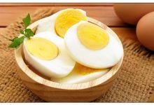 Photo of معلومات عن البيض : أستخدامات و فوائد قشر البيض الصحية