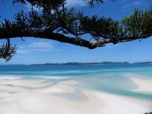 Whitehaven-Beach-Whitsunday-Island-Australia71-728x546_thumb[2]