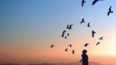 Photo of حلم الحرية