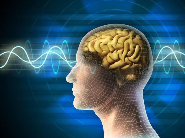 يحمي السيلينيوم الدماغ