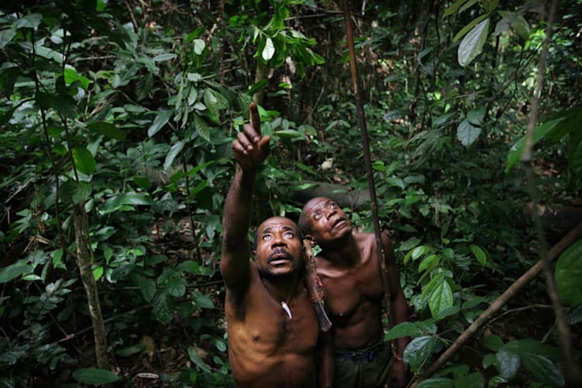 """قبائل """"بايكا"""" أحدي القبائل النائية في جمهورية أفريقيا الوسطى"""