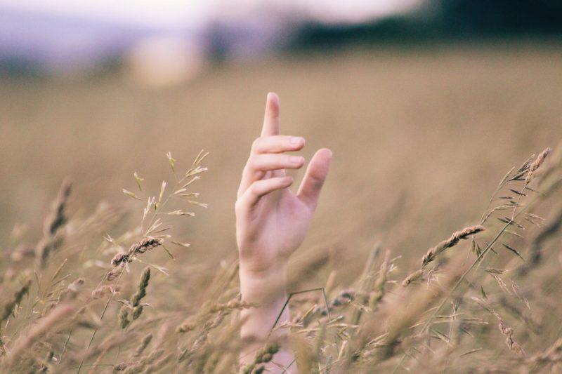 أصابع اليد