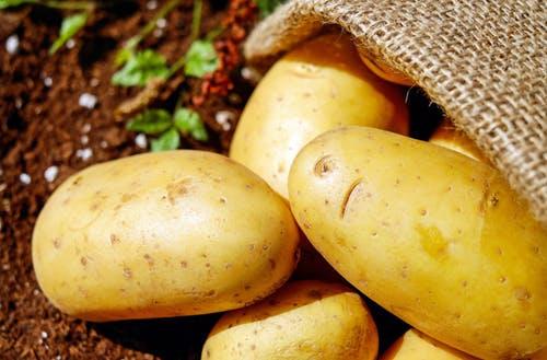 البطاطس كعلاج من علامات تمدد الجلد